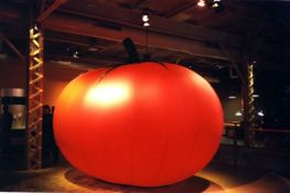 Inflatable tomato<br/>Montreal Science Center