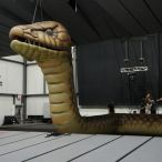 Inflatable snake<br/>
